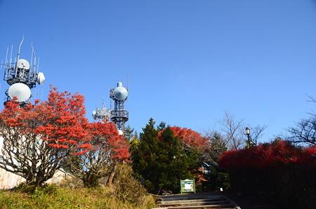 秋空のガーデンミュージアム比叡
