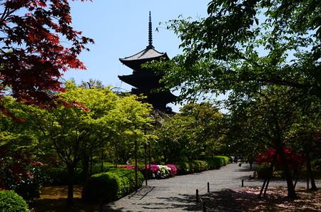 東寺の初夏風景