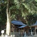 写真: 愛宕神社