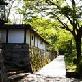 写真: 石積みの町 坂本