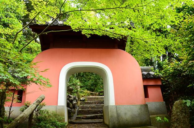 写真: 五百羅漢への門