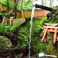写真: 薬力の滝