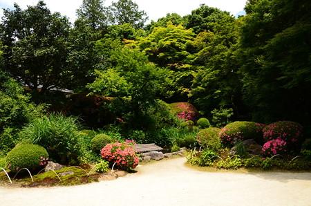 皐月咲く詩仙堂庭園