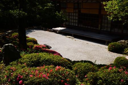 皐月咲く庭園
