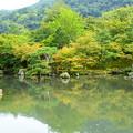 写真: 色づき始めた曹源池