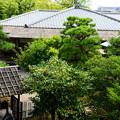 写真: 蘆菴2階からの眺め