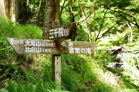 三千院へ10分、比叡山へ4時間