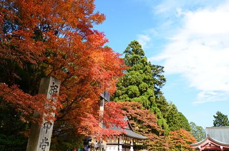 秋の比叡山延暦寺