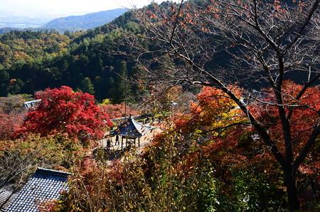 紅葉景色の善峯寺