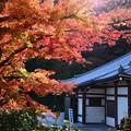 文殊寺宝館と紅葉