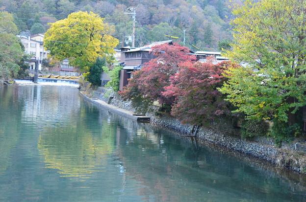 写真: 嵐山