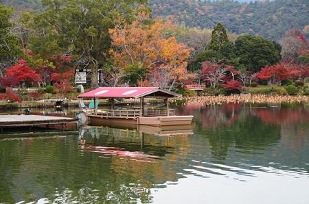 大沢の池の彩り