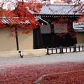 写真: 初冬の京都迎賓館