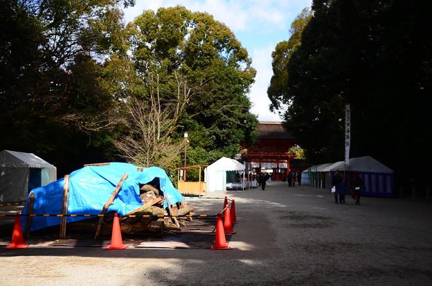 お正月準備の下鴨神社