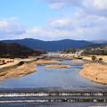 新春の賀茂川