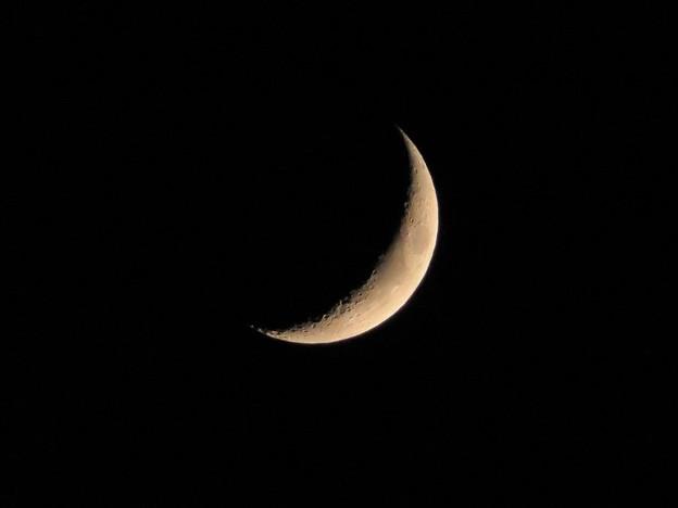 夕月(月齢4.3)_8247