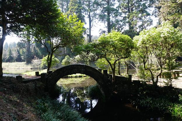 写真: 納池公園