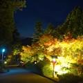 Photos: 三方石観世音ライトアップ