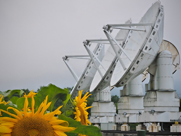 170817_長野県南牧村・国立天文台野辺山宇宙電波観測所_ミリ波干渉計_F170817D8095_MZD60M_FH_C-SG_FS5_X8Ss