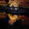 Photos: 171128_伊豆市・修善寺町・虹の郷_ライトアップ紅葉風景_F171128G3083_MZD12ZP_X8Ss