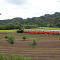 Photos: 里山トロッコ列車