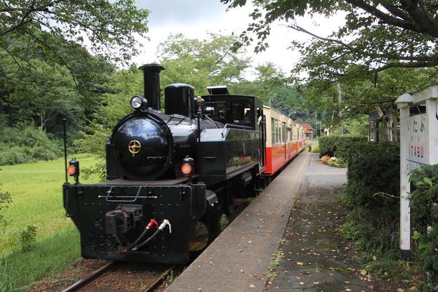 写真: 里山トロッコ列車2
