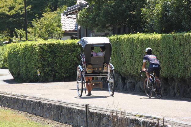 写真: 嵯峨野での一コマ