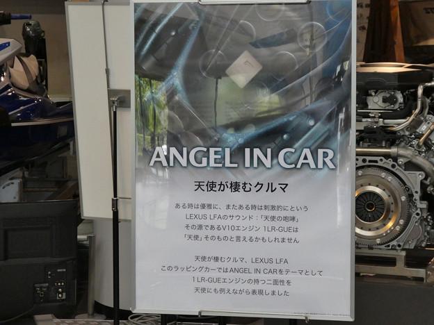 天使が棲む