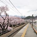 Photos: E257系 特急あずさ号