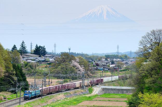 富士山をバックに里山を行く中央線貨物列車