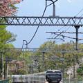 Photos: 山桜が咲く長坂駅を通過するE257系特急あずさ号