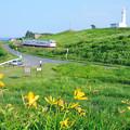 Photos: 鮫角灯台と八戸線キハ