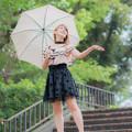 Photos: 雨に唄えば3