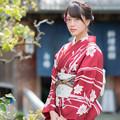写真: お店の外では「お嬢さん」やのうて、「智子」と呼んでおくれやす。