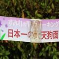 日本一の天狗面