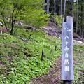 八ヶ岳自然園入口