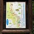 川俣東沢渓谷遊歩道案内図
