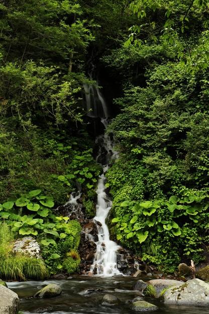 小さい滝が何段にもなって 落ちる姿