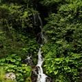 写真: 小さい滝が何段にもなって 落ちる姿