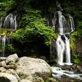 写真: 緑におおわれた岩間から絹糸のように流れ落ちる神秘さ