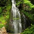 Photos: 轟々と水面をたたく音が響く八岳の滝