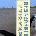 霧ヶ峰富士見台「ニッコウキスゲ郡生地」