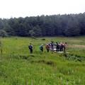 湿原の花散策ハイカーグループ