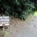 写真: 葦毛湿原・岩崎自然歩道入口