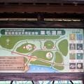 写真: 葦毛湿原散策案内図