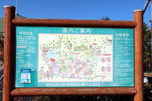 八ヶ岳自然文化園案内図