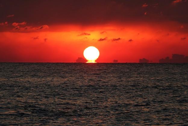光の芸術 「だるま太陽」
