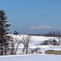 Photos: 元日の雪景色