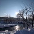 Photos: 冬の川辺