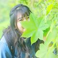 写真: 小顔